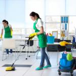 Comment se débarrasser des odeurs d'animaux domestiques dans votre maison ?